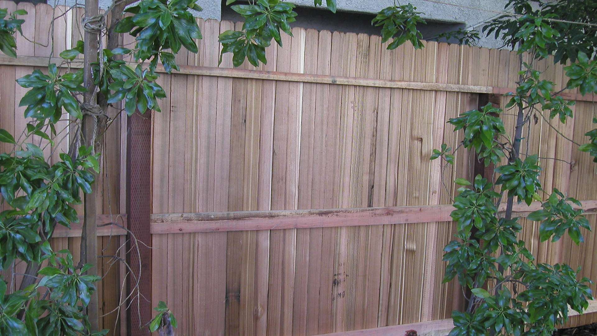 Wood Fence Supplies In Los Angeles Ventura Atascadero
