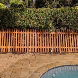 Spaced Western Red Cedar Grape Stake Fence